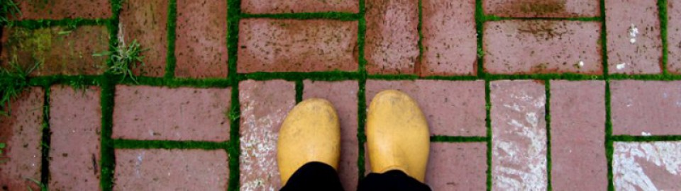 cropped-feet1.jpg